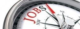 Jobs website development