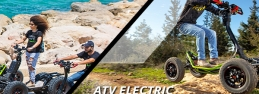 Website design for electric vehicle