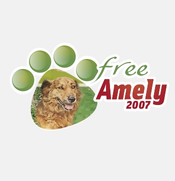 Animal shelter logo design