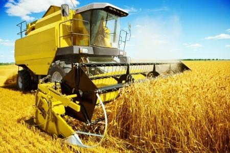 Web design services for agriculture sector